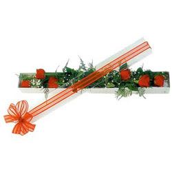 Nevşehir çiçek gönderme sitemiz güvenlidir  6 adet kirmizi gül kutu içerisinde