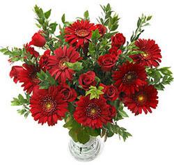 5 adet kirmizi gül 5 adet gerbera aranjmani  Nevşehir çiçek yolla , çiçek gönder , çiçekçi