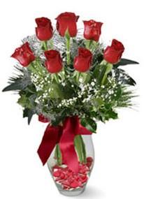 Nevşehir çiçekçi telefonları  7 adet kirmizi gül cam vazo yada mika vazoda