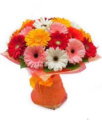 Renkli gerbera buketi  Nevşehir internetten çiçek satışı