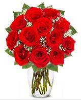 12 adet vazoda kıpkırmızı gül  Nevşehir ucuz çiçek gönder