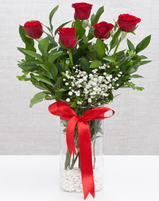 cam vazo içerisinde 5 adet kırmızı gül  Nevşehir hediye çiçek yolla