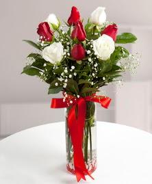 5 kırmızı 4 beyaz gül vazoda  Nevşehir hediye çiçek yolla