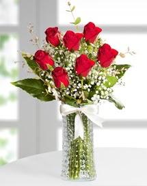 Cam vazoda 7 adet kırmızı gül  Nevşehir yurtiçi ve yurtdışı çiçek siparişi