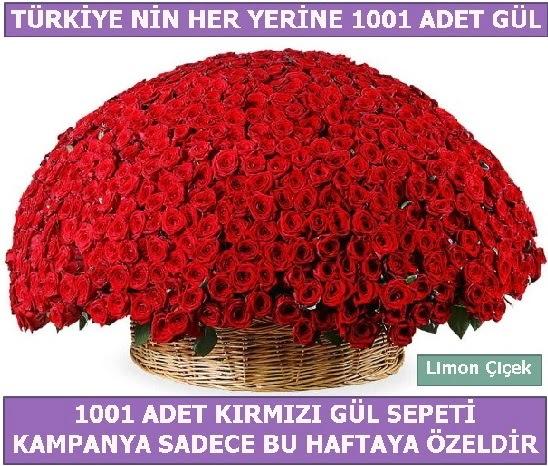 1001 Adet kırmızı gül Bu haftaya özel  Nevşehir hediye sevgilime hediye çiçek