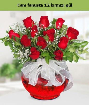 Cam içerisinde 12 adet kırmızı gül  Nevşehir çiçek yolla