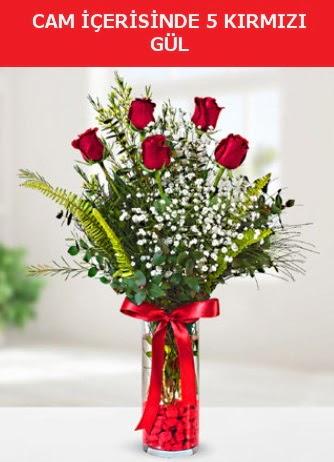 Cam içerisinde 5 adet kırmızı gül  Nevşehir çiçek gönderme sitemiz güvenlidir