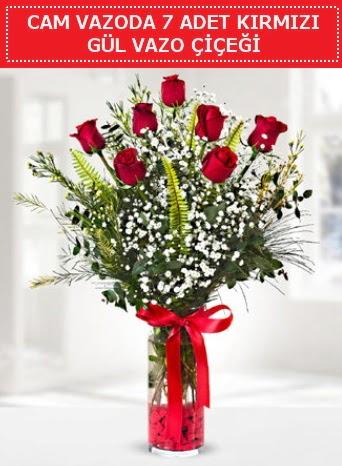 Cam vazoda 7 adet kırmızı gül çiçeği  Nevşehir çiçek online çiçek siparişi