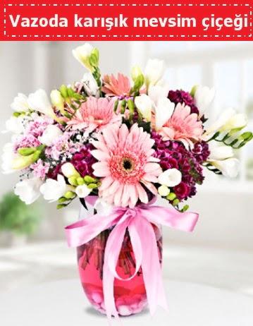 Vazoda karışık mevsim çiçeği  Nevşehir yurtiçi ve yurtdışı çiçek siparişi