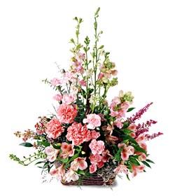 Nevşehir online çiçekçi , çiçek siparişi  mevsim çiçeklerinden özel