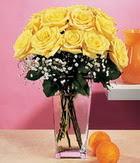 Nevşehir çiçek yolla  9 adet sari güllerden cam yada mika vazo