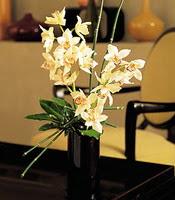 Nevşehir çiçek gönderme  cam yada mika vazo içerisinde dal orkide