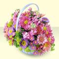 Nevşehir uluslararası çiçek gönderme  bir sepet dolusu kir çiçegi  Nevşehir çiçek online çiçek siparişi