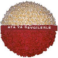 arma anitkabire - mozele için  Nevşehir çiçek online çiçek siparişi