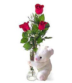 oyuncak ve 3 adet gül  Nevşehir çiçek gönderme sitemiz güvenlidir