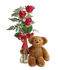oyuncak ve güller tanzim   Nevşehir kaliteli taze ve ucuz çiçekler