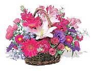 küçük karisik özel sepet   Nevşehir internetten çiçek siparişi