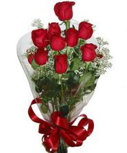9 adet kaliteli kirmizi gül   Nevşehir 14 şubat sevgililer günü çiçek