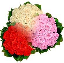 3 renkte gül seven sever   Nevşehir yurtiçi ve yurtdışı çiçek siparişi