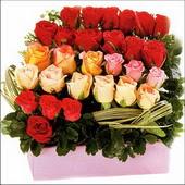 15 adet renkli gül ve cam   Nevşehir İnternetten çiçek siparişi