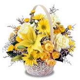 sadece sari çiçek sepeti   Nevşehir çiçek online çiçek siparişi