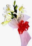 Nevşehir yurtiçi ve yurtdışı çiçek siparişi  ince vazoda gerbera ve ayi