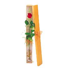 ince  kutuda  1  gül   Nevşehir çiçek servisi , çiçekçi adresleri