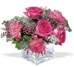 Nevşehir hediye çiçek yolla  cam içerisinde 5 gül 7 gerbera çiçegi
