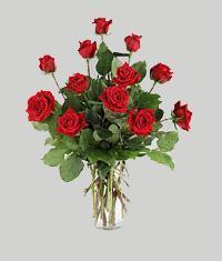 Nevşehir hediye çiçek yolla  11 adet kirmizi gül vazo halinde