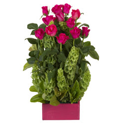 12 adet kirmizi gül aranjmani  Nevşehir online çiçek gönderme sipariş