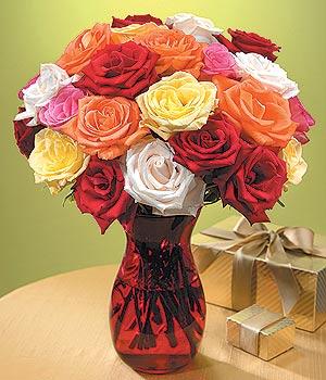 Nevşehir internetten çiçek satışı  13 adet renkli gül