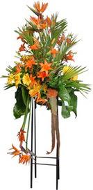 Nevşehir çiçek gönderme sitemiz güvenlidir  perförje tanzimi dügün nikah ve açilislara