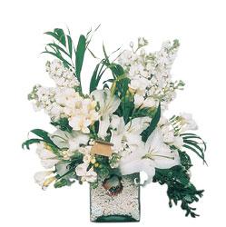 Nevşehir çiçekçi telefonları  sadece beyazlardan olusmus mevsim cam yada mika tanzim