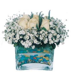 Nevşehir İnternetten çiçek siparişi  mika yada cam içerisinde 7 adet beyaz gül