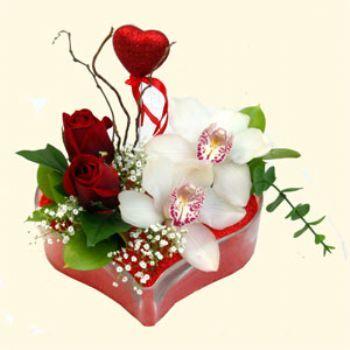 Nevşehir çiçekçiler  1 kandil orkide 5 adet kirmizi gül mika kalp