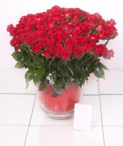 Nevşehir ucuz çiçek gönder  101 adet kirmizi gül