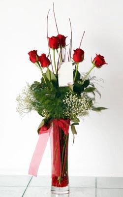 Nevşehir hediye çiçek yolla  6 adet kirmizi gül ve cam yada mika vazo