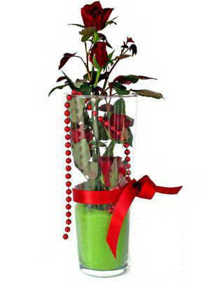 Nevşehir çiçek , çiçekçi , çiçekçilik  Cam yada mika içerisinde 9 adet kirmizi gül - sevdiklerinize özel
