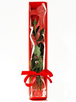 Nevşehir uluslararası çiçek gönderme  1 adet kutuda gül