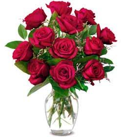 Nevşehir çiçek , çiçekçi , çiçekçilik  1 düzine kirmizi gül sevenlere özel vazo gülleri