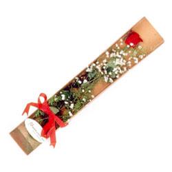 Nevşehir yurtiçi ve yurtdışı çiçek siparişi  Kutuda tek 1 adet kirmizi gül çiçegi