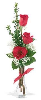 Nevşehir hediye çiçek yolla  mika yada cam vazoda 3 adet kirmizi gül