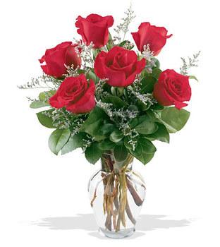 Nevşehir hediye çiçek yolla  cam yada mika vazoda 6 adet kirmizi gül
