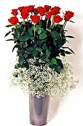 Nevşehir ucuz çiçek gönder  9 adet kirmizi gül cam yada mika vazoda