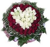 Nevşehir online çiçek gönderme sipariş  27 adet kirmizi ve beyaz gül sepet içinde