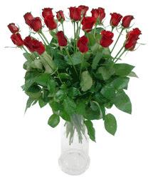 Nevşehir kaliteli taze ve ucuz çiçekler  11 adet kimizi gülün ihtisami cam yada mika vazo modeli