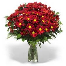 Nevşehir çiçek servisi , çiçekçi adresleri  Kir çiçekleri cam yada mika vazo içinde