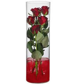 cam içerisinde 7 adet kirmizi gül  Nevşehir çiçek gönderme