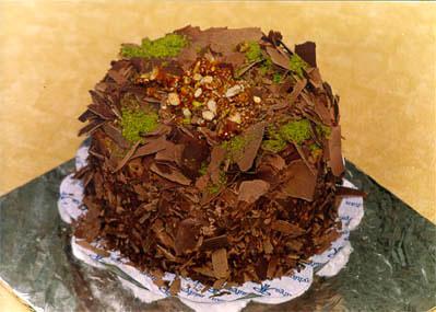 Çikolatali 4 ila 6 kisilik yas pasta  Nevşehir çiçek online çiçek siparişi
