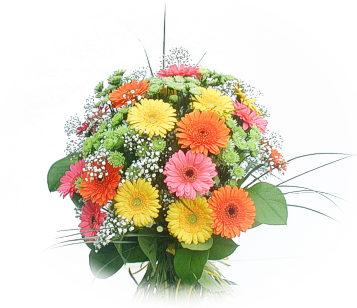 13 adet gerbera çiçegi buketi  Nevşehir çiçek , çiçekçi , çiçekçilik
